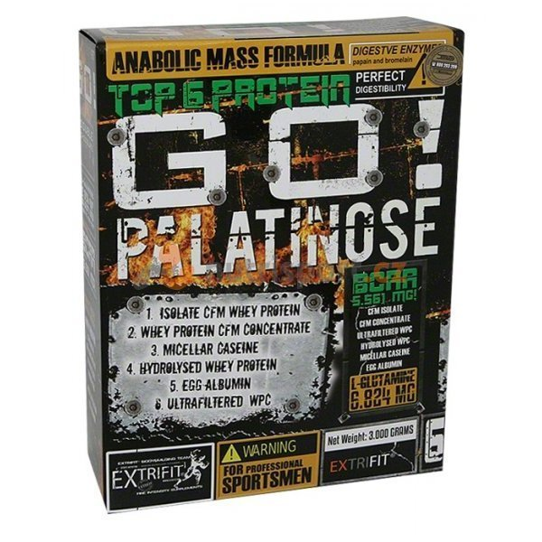 Test complement alimentaire : Gainer Go Palatinose® d' Extrifit
