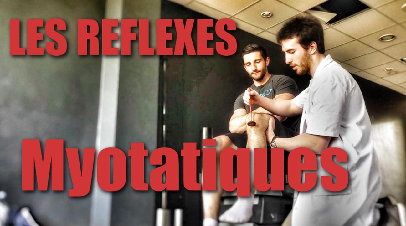 Musculation : Les Réflexes Myotatiques par le Doc Paul Matthieu CHIARONI et TAJIZ
