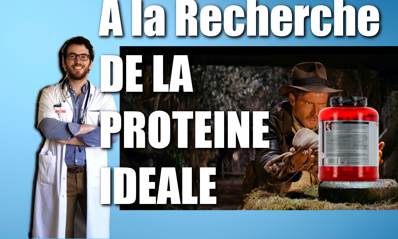 LES PROTEINES – C'EST QUOI?! A LA RECHERCHE DE LA PROTEINE IDEALE  – CDD#16